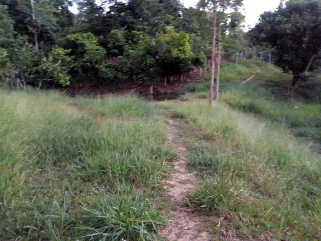 Fazenda em Ubaira-BA - Foto 3