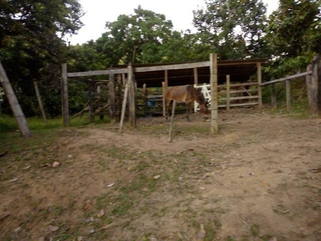 Fazenda em Ubaira-BA - Foto 15