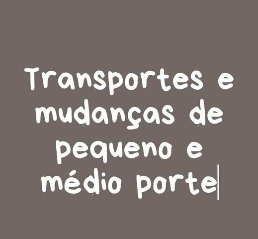 TuTransportes Araújo