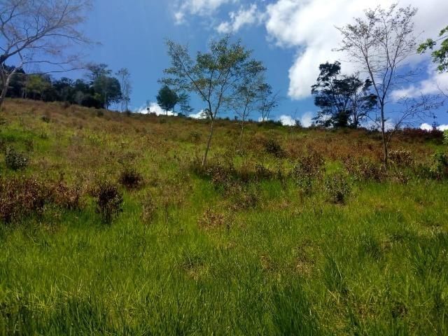 Fazenda em Ubaira-BA - Foto 8