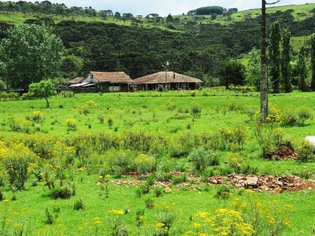 Fazenda em Urubici / chácara área rural - Foto 11