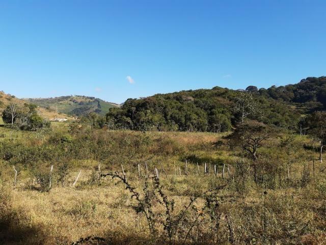 676 - Área de terra no Bugre de 29 hectares - Foto 12
