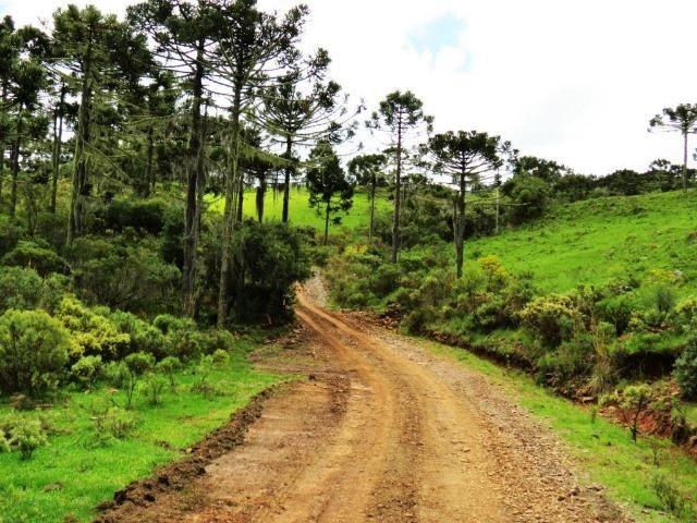 Fazenda em Urubici / chácara área rural - Foto 5