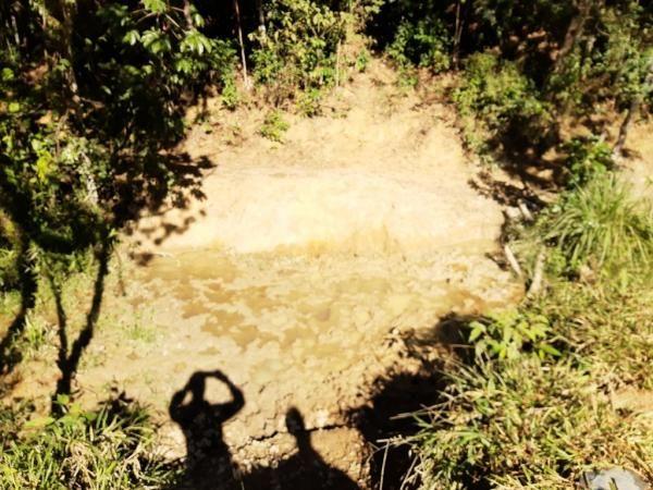 676 - Área de terra no Bugre de 29 hectares - Foto 15