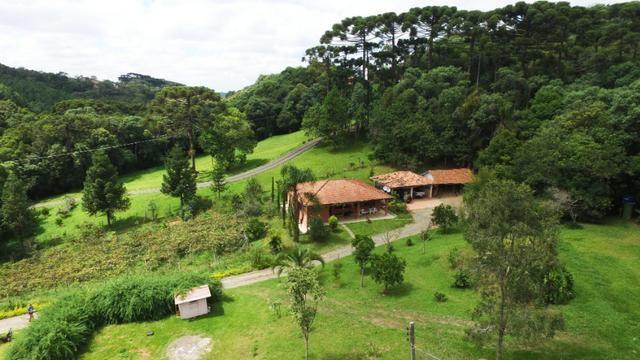 Chácara em Campo Largo Divisa com Curitiba (Oportunidade) - Foto 5