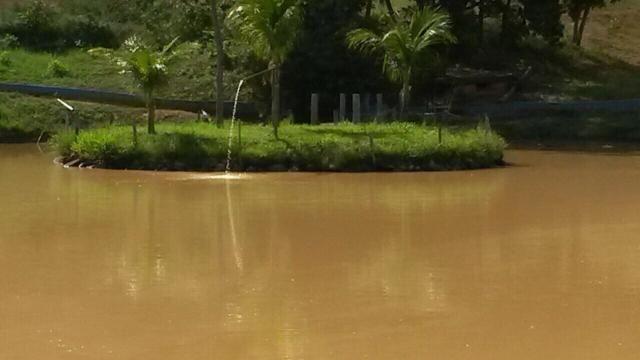 Fazenda 2.686 hectares em ARINOS MG - Foto 14