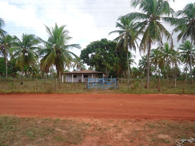 Fazenda 43.9 hectares