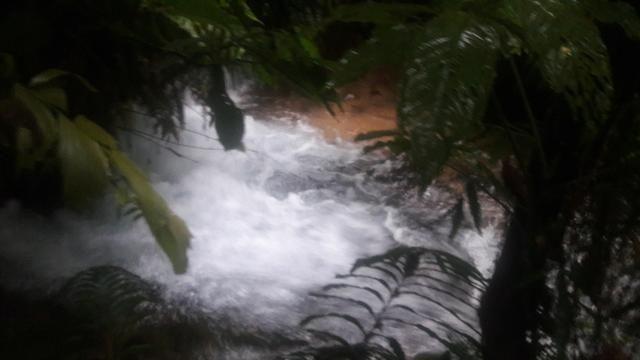 1080 Hectares em Tangará x Paraná, cerrado Tangará-MT - Foto 3
