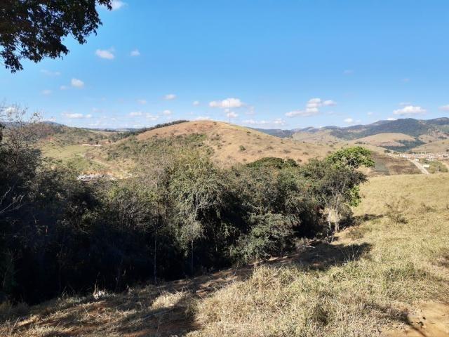 676 - Área de terra no Bugre de 29 hectares - Foto 4