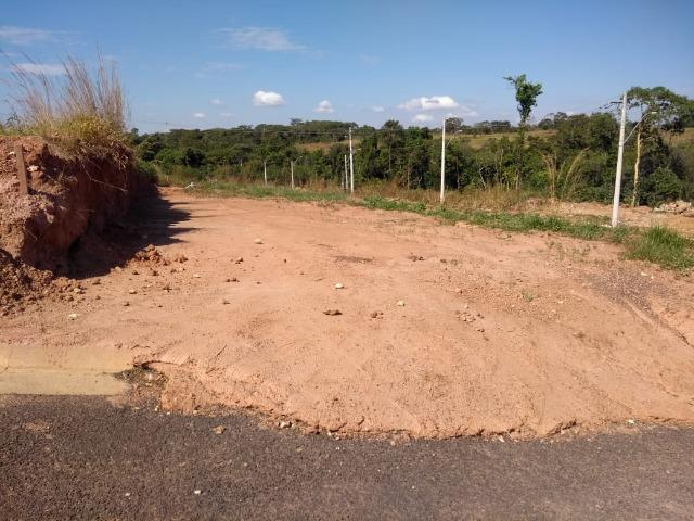 Lote de 300m² a venda no setor Jardim dos Ipês em Caldas Novas GO - Foto 6