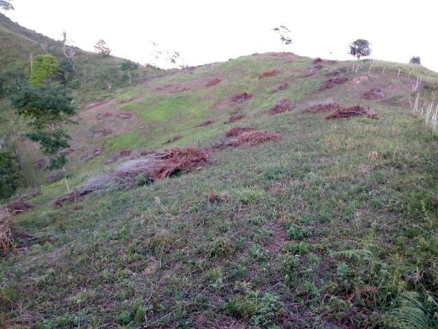 Fazenda em Ubaira-BA - Foto 4