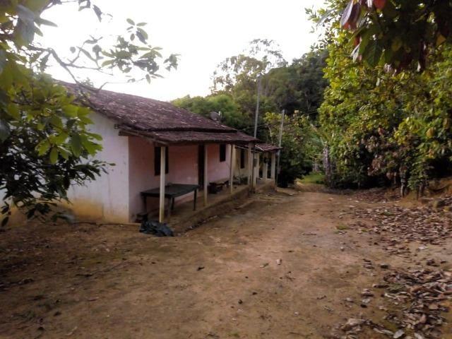 Fazenda em Ubaira-BA - Foto 2
