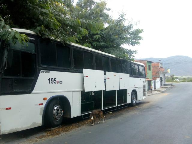 Ônibus GV 1000 98 99