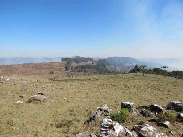 Fazenda em Urubici / chácara área rural - Foto 14