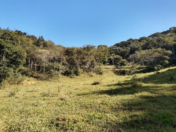 676 - Área de terra no Bugre de 29 hectares