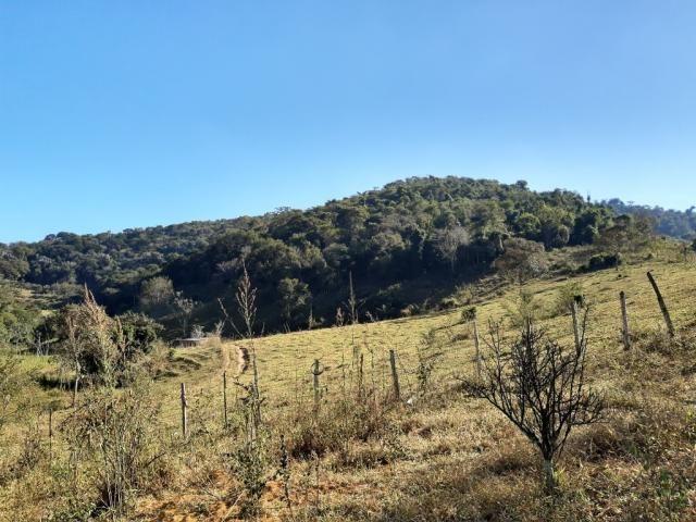 676 - Área de terra no Bugre de 29 hectares - Foto 14