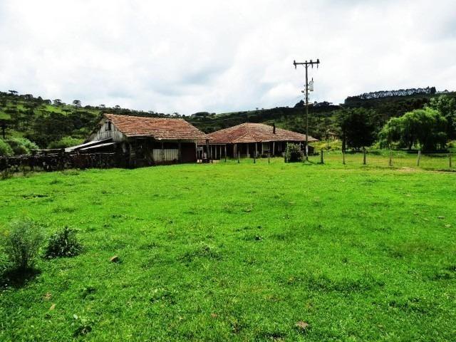 Fazenda em Urubici / chácara área rural - Foto 3