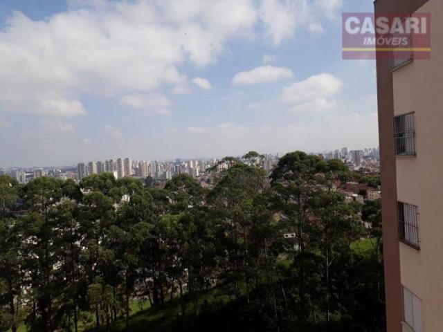 Apartamento com 2 dormitórios à venda, 55 m² - jardim irajá - são bernardo do campo/sp - Foto 7