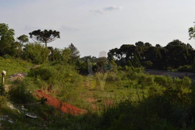 Terreno para alugar, 3100 m² por r$ 3.900/mês - santa felicidade - curitiba/pr - Foto 4