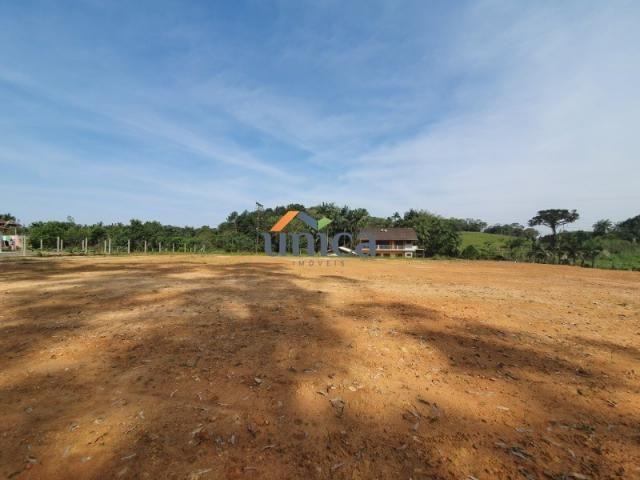 Terreno para alugar em Vila nova, Joinville cod:UN01244 - Foto 2