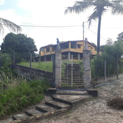 Fazenda com 15 hectares entre vera cruz e macaiba - Foto 2