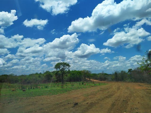 Terreno Rural 20.000 m² - Matozinhos