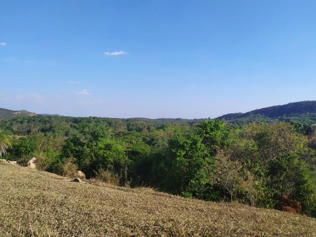 Terreno Rural 20.000 m² - Matozinhos - Foto 5