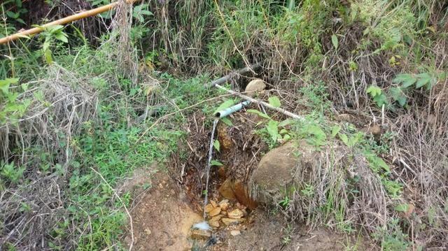 Chã Grande=Vend.170=Sítio 11 Hect= Pronto pra Criar e Plantar.Água,Energia e mais - Foto 9
