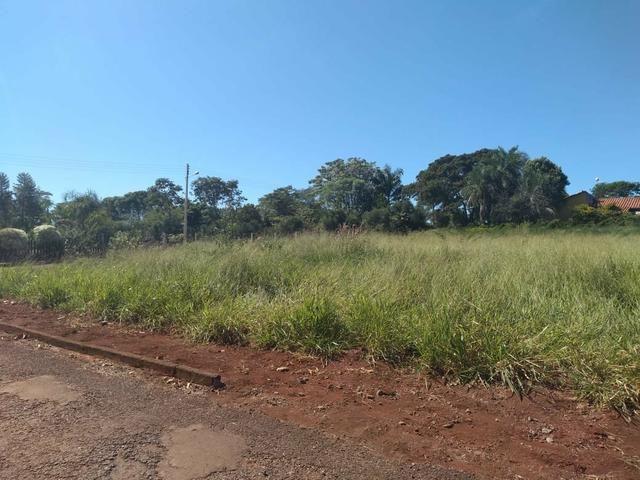 Condomínio de chácara Residencial Aroeira - Foto 4
