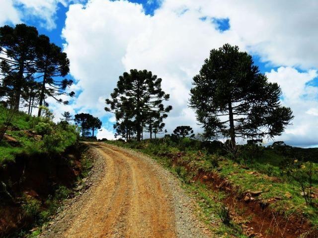 Fazenda em Urubici / chácara área rural - Foto 6