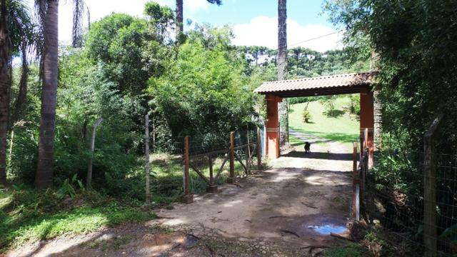 Chácara em Campo Largo Divisa com Curitiba (Oportunidade) - Foto 9