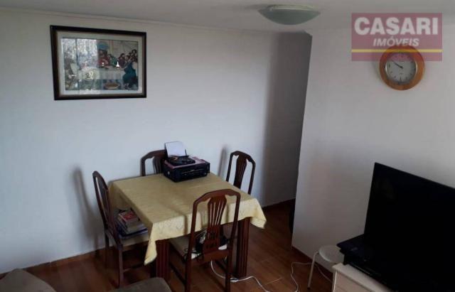 Apartamento com 2 dormitórios à venda, 55 m² - jardim irajá - são bernardo do campo/sp