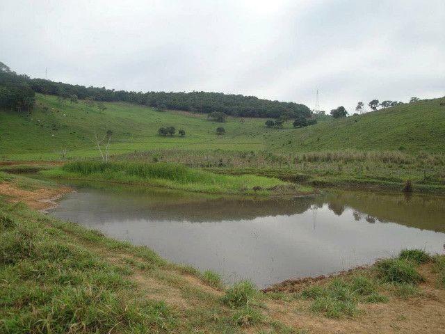 Vendo sítios e fazendas com ótimos preços - Foto 2