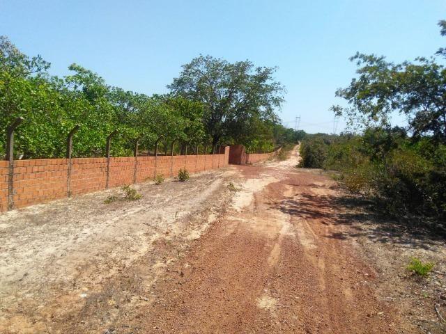 Sitio de 20 hectares, rico em água ótima casa sede e apenas 20 km de Teresina - Foto 2