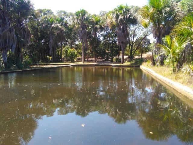 Sitio de 20 hectares, rico em água ótima casa sede e apenas 20 km de Teresina - Foto 3