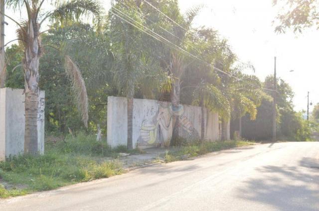 Terreno para alugar, 3100 m² por r$ 3.900/mês - santa felicidade - curitiba/pr - Foto 7