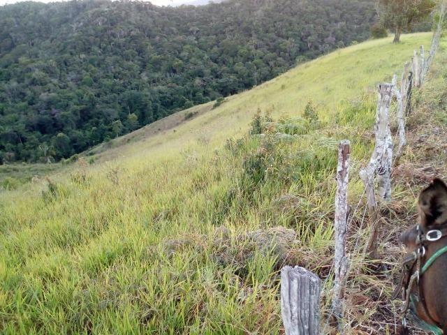 Fazenda em Ubaira-BA - Foto 16