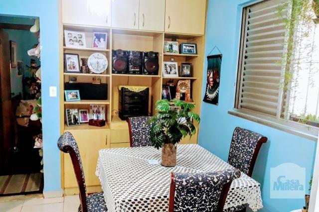Apartamento à venda com 3 dormitórios em Padre eustáquio, Belo horizonte cod:251011 - Foto 4