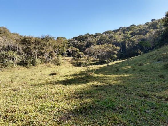 676 - Área de terra no Bugre de 29 hectares - Foto 6
