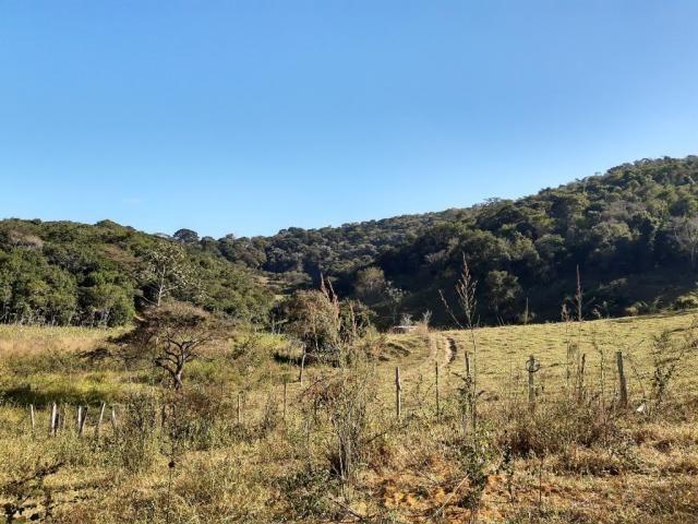 676 - Área de terra no Bugre de 29 hectares - Foto 16