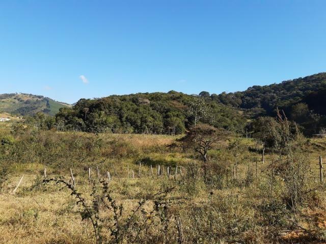 676 - Área de terra no Bugre de 29 hectares - Foto 13