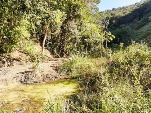 676 - Área de terra no Bugre de 29 hectares - Foto 18