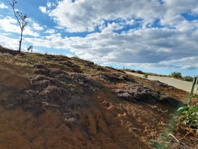 676 - Área de terra no Bugre de 29 hectares - Foto 11