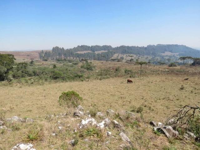 Fazenda em Urubici / chácara área rural - Foto 15