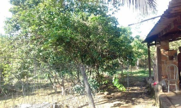 Casa de condomínio à venda com 3 dormitórios em Zona rural, Felixlândia cod:IBH980 - Foto 4