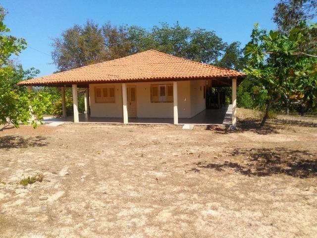 Sitio de 20 hectares, rico em água ótima casa sede e apenas 20 km de Teresina - Foto 8