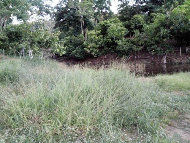 Fazenda em Ubaira-BA