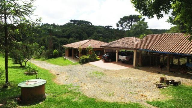 Chácara em Campo Largo Divisa com Curitiba (Oportunidade) - Foto 8