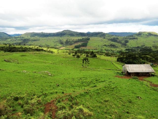 Fazenda em Urubici / chácara área rural - Foto 7