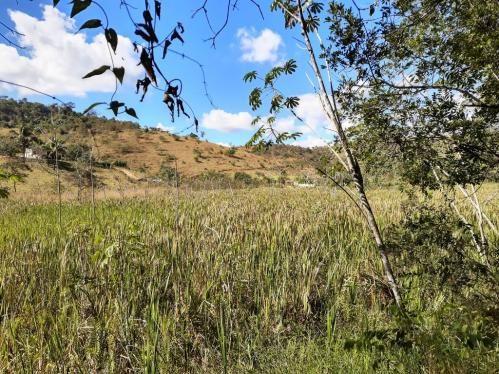 676 - Área de terra no Bugre de 29 hectares - Foto 2